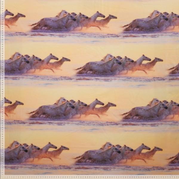 Bomuldsjersey med heste