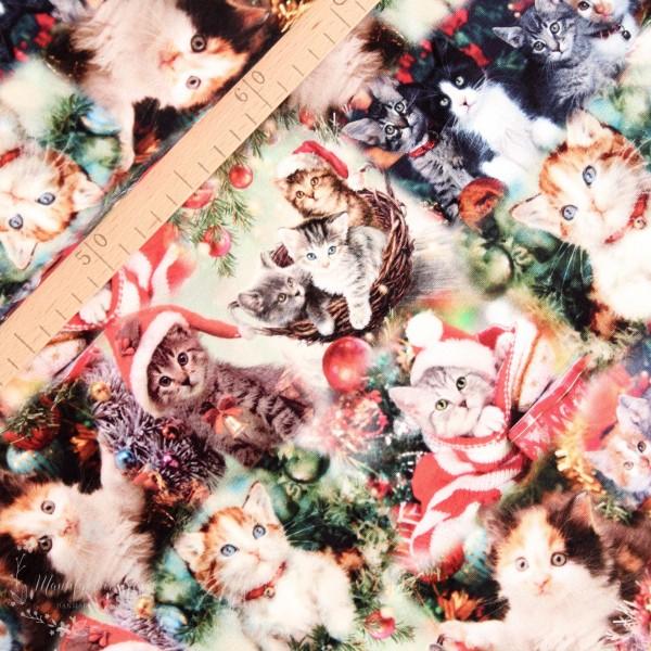 "Bomuldsjersey ""Christmas Cats"""