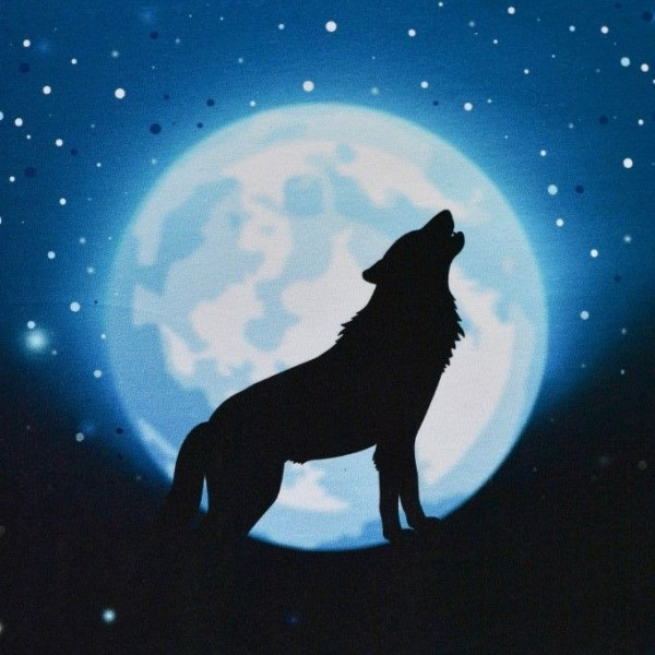 "100 cm French Terry Panel ""Wolf Moon 2.0"" blå"
