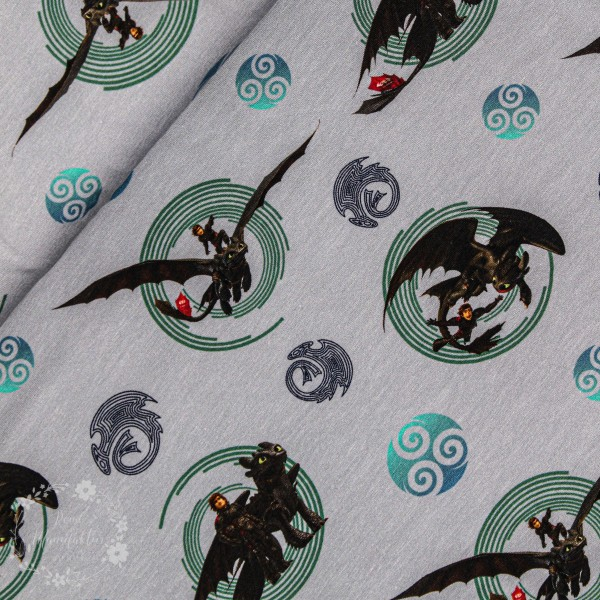 """Bomuldsjersey """"How to train your Dragon"""" fra The Hidden World"""